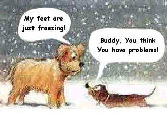 Image result for Getting chilly