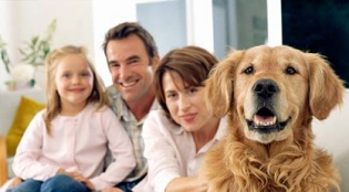 Happy dog = Happy Family - Newmarket Aurora