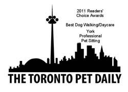 Toronto Pet Daily